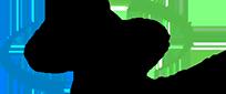 Buffalo computer graphics logo
